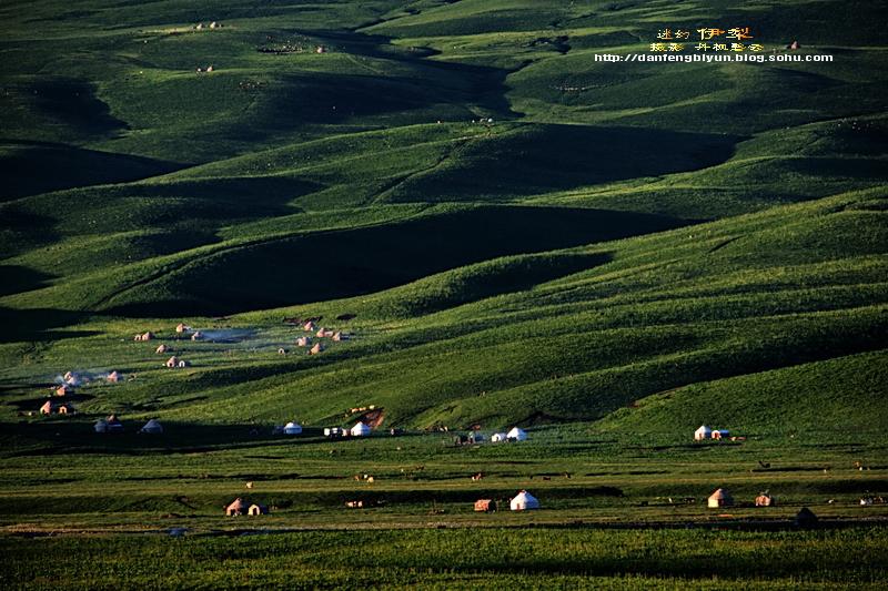 北京到乌鲁木齐,伊犁物流公司