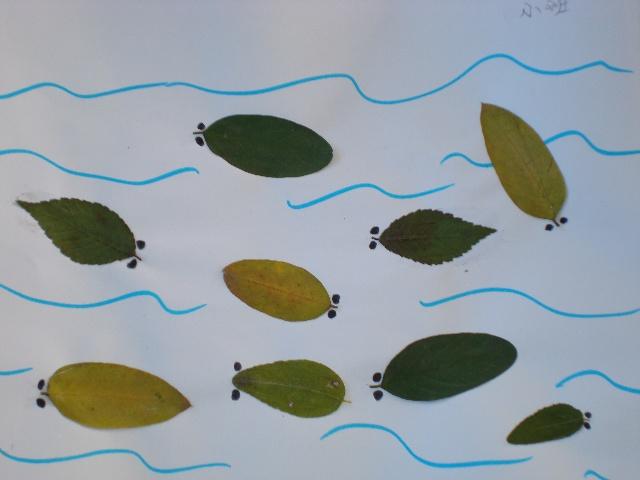 树叶粘贴图片-粘贴图片