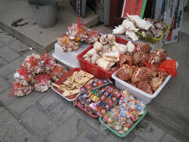 葫芦岛乃海边城市,海鲜是每餐都免不掉的,但一定要注意适量,必须