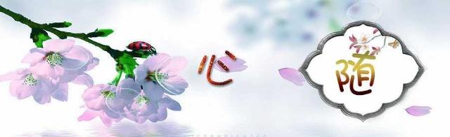 【减字木兰花】·空守三春【中吕·山坡羊】·闲来醉