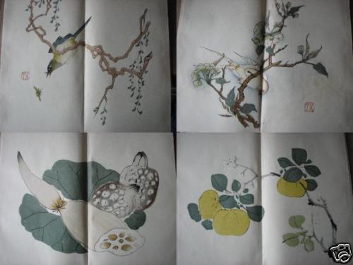 兰花画法彩铅笔画